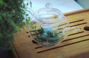 thé vert théière verre