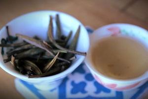 Yin Zhen infusion