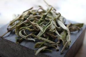 mao feng thé vert chine yunnan