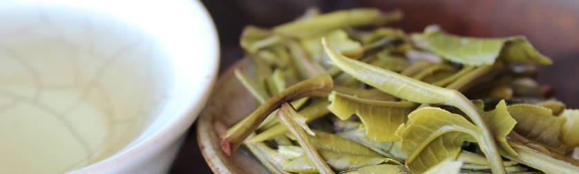les thés riches en antioxydants, bienfaits pour la santé