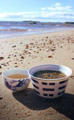 infusion d'un thé à la plage