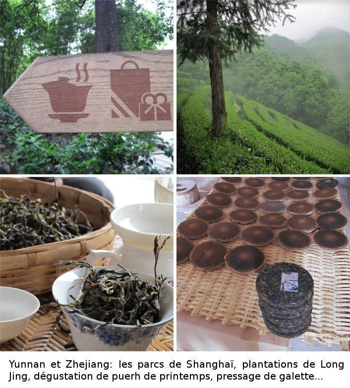 Zhejiang et Yunnan