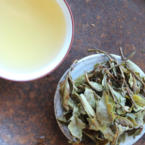Feuilles entières de thé blanc Bai Mu Dan