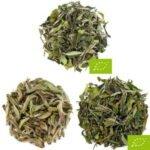 pack de 3 paquets de dégustation de thé blanc