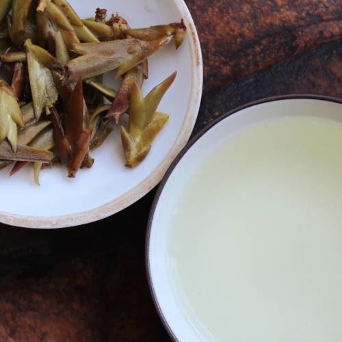 bourgeons de thé blanc, théiers sauvages de la vallée de Nanmei