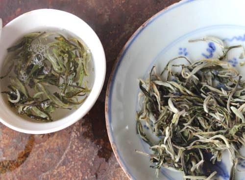 récolte 2018 thé vert du Yunnan