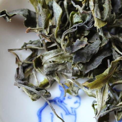 grandes feuille de thé vert