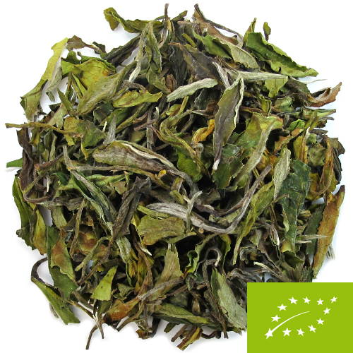 thé blanc du Népal printemps 2020