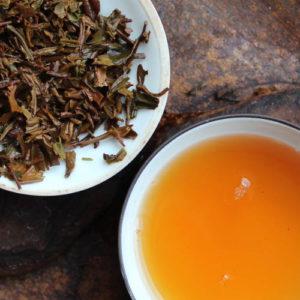 thé issu de l'agriculture biologique, oxydation des feuilles