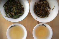 Thé blanc Népal Nuage de Jade Bio