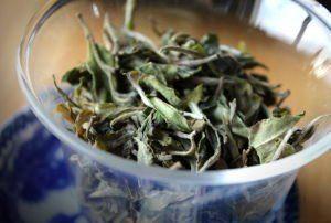 thé blanc nuage de Jade BIO 2015