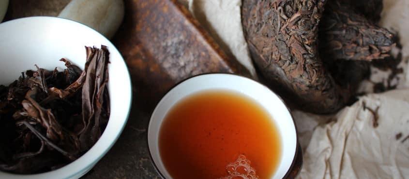 Puerh champignon thé