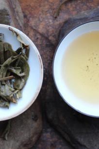 infusion des feuilles puerh yiwu