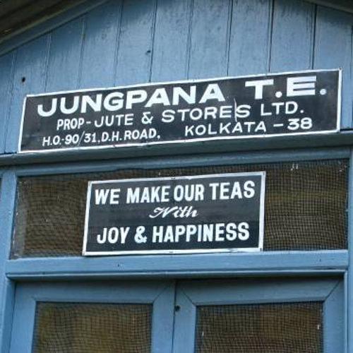 tea factory Jungpana