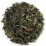 thé de printemps des montagnes indiennes