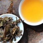 feuilles infusées de thé pu erh