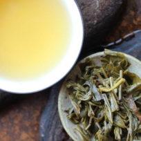 Thé puerh en tuocha (nid d'oiseau) de Jinuo shan cha chang produit en 2015
