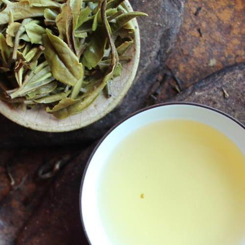 Thé blanc pivoine blanche du fujian
