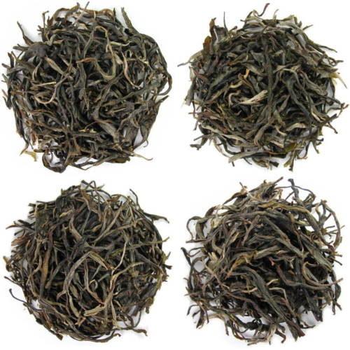 dégustation de thé récoltes fraiches