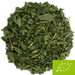 thé bancha automne famille hayashi