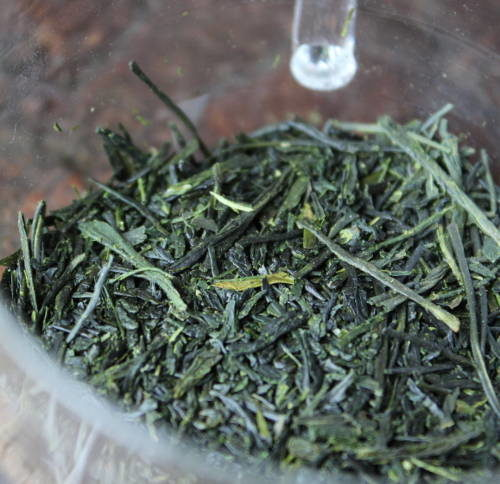 thé vert bio japonais ombré Kabusecha