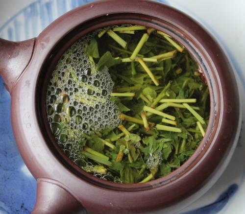 thé vert bio du Japon kukicha thé de tiges