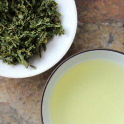 thé vert sencha asanagi famille hayashi