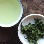 gyokuro thé japonais kyushu