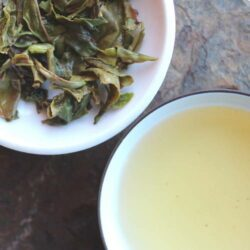 infusion d'un first flush Darjeeling