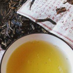 thé pu-erh vert nanmei vieux théiers gushu