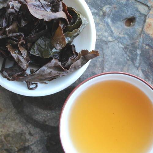 GABA thé oolong en gongfucha
