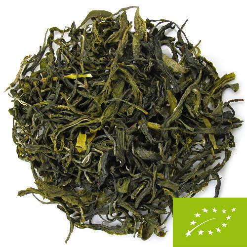 thé vert d'ilam Népal, récolte de printemps