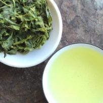 thé vert japonais sencha