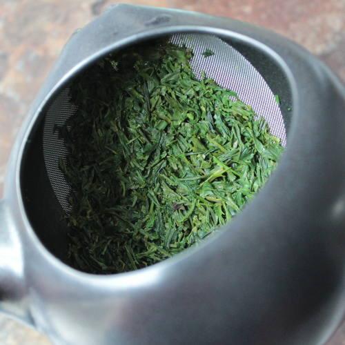 utilisation d'un kyusu avec un kabusecha