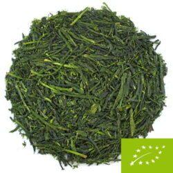 thé vert première récolte culture ombrée