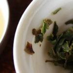 degustation d'un Darjeeling first flush de printemps