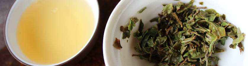 degustation d'un Darjeeling first flush de printemps