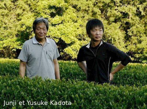 Junji et Yusuke Kadota dans leurs plantations