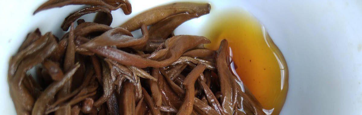 feuilles de thés infusées