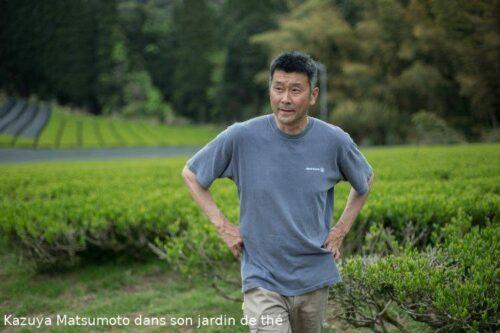 Mr Matsumoto dans son jardin de thé à Kumamoto