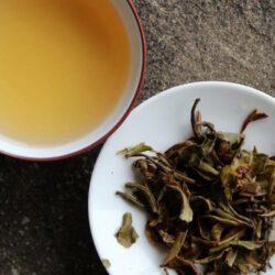 Thé noir de Rohini