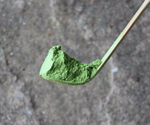 Matcha sur une cuillère en bambou Chashaku
