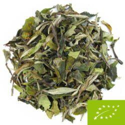 Thé blanc Bio Chine grandes feuilles