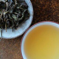 Infusion de thé vert taiwanais théiers sauvages de Luigui