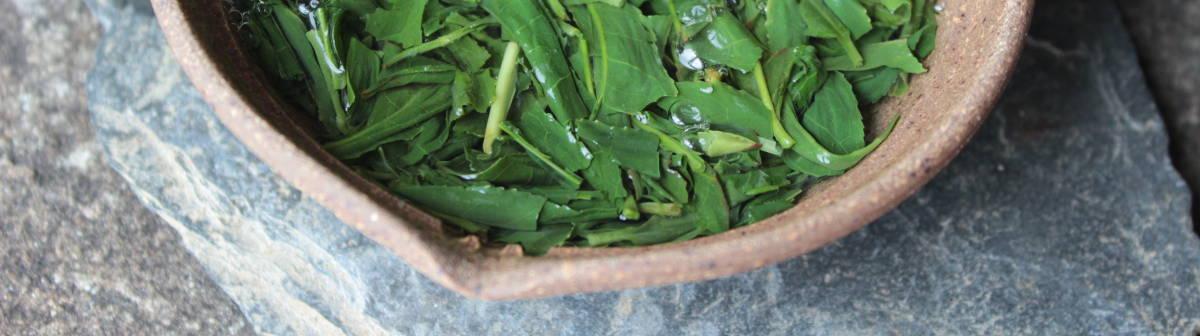 thé vert japonais récolte 2021